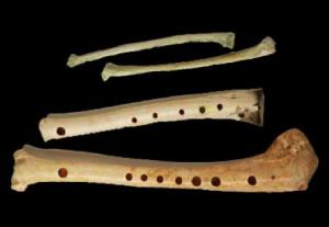 huesos utilizados para hacer música